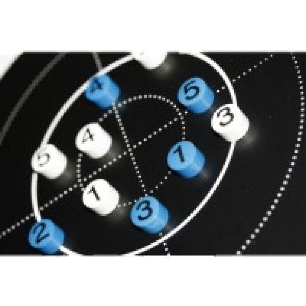Larsen Biathlon extra magneter till anvisningstavlan visas